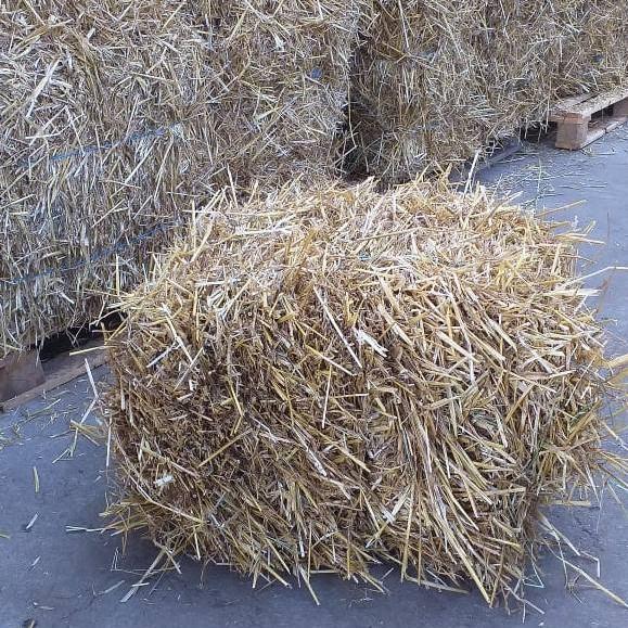Põhupakk nisu